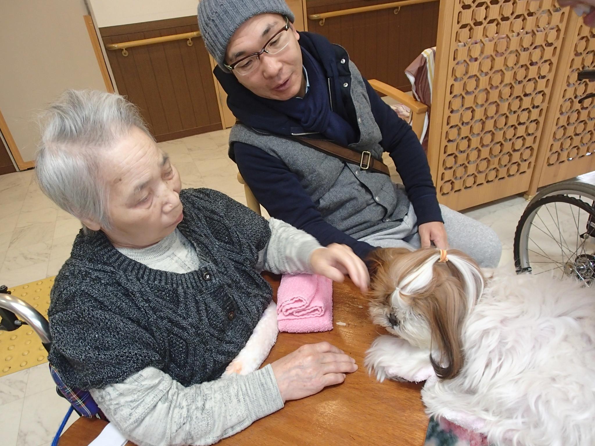 serapi-dog12gatu-097.jpg